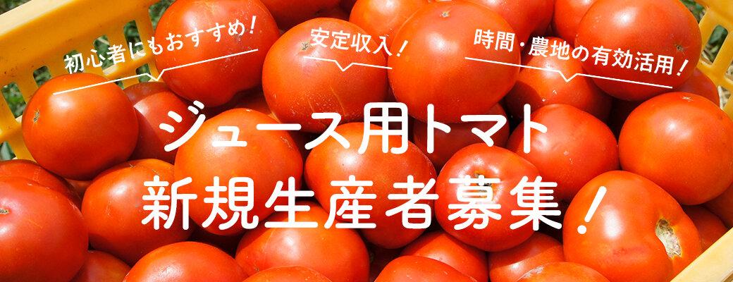 ジュース用トマト新規生産者募集