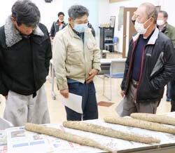 ナガイモ目揃会を開催、掘り取りは29日から解禁