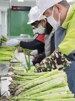 収穫支援センター