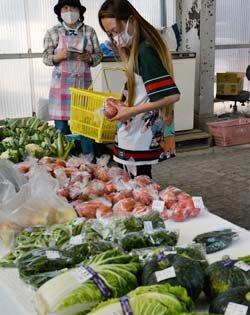 新村支所に直売所オープン 新鮮な野菜を届けたい