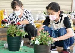 寄せ植え教室を開催 花で華やかに
