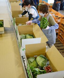 朝日野菜BOX発送 農産物のおいしさを知ってほしい