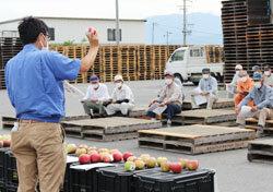 早生りんご「つがる」集出荷規格目揃会 出荷本番に向け規格を確認
