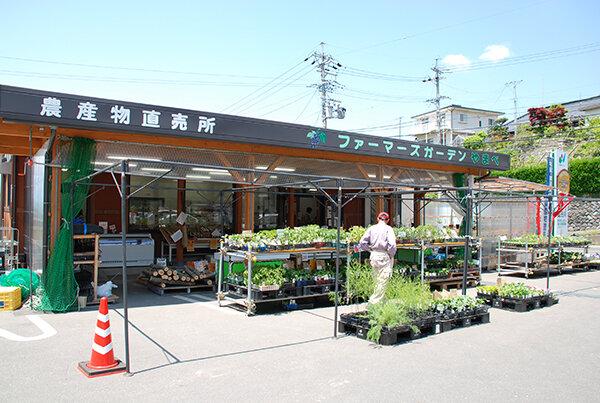 yamabe1.jpg